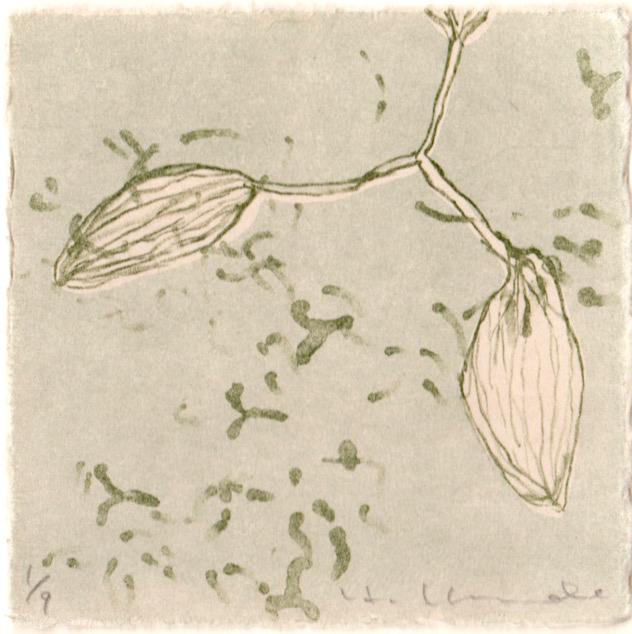 kondo_flower_2--1